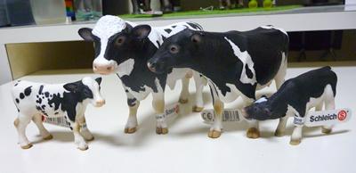 071 生還|牛