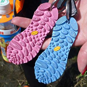 11 【懲りずに開催】特別企画「カメレオン祭り in EZO」|RSR2010
