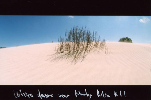 aus109 モンキーマイアの砂丘|ワーホリログ091